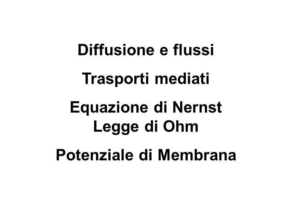 Equazione di Nernst Legge di Ohm Potenziale di Membrana