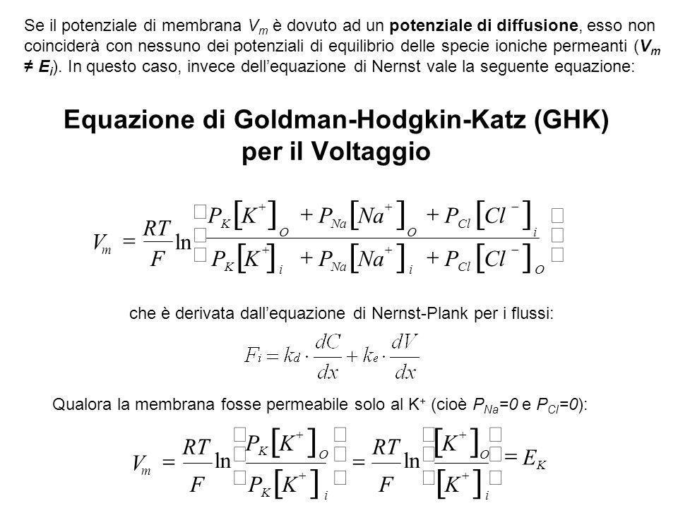 Equazione di Goldman-Hodgkin-Katz (GHK) per il Voltaggio