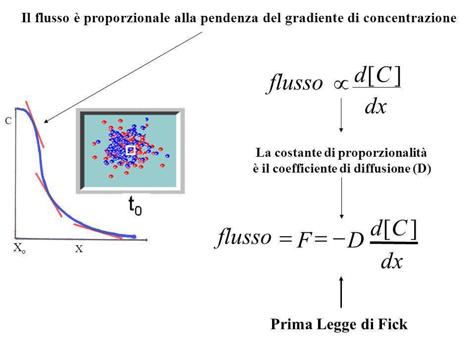 La costante di proporzionalità è il coefficiente di diffusione (D)