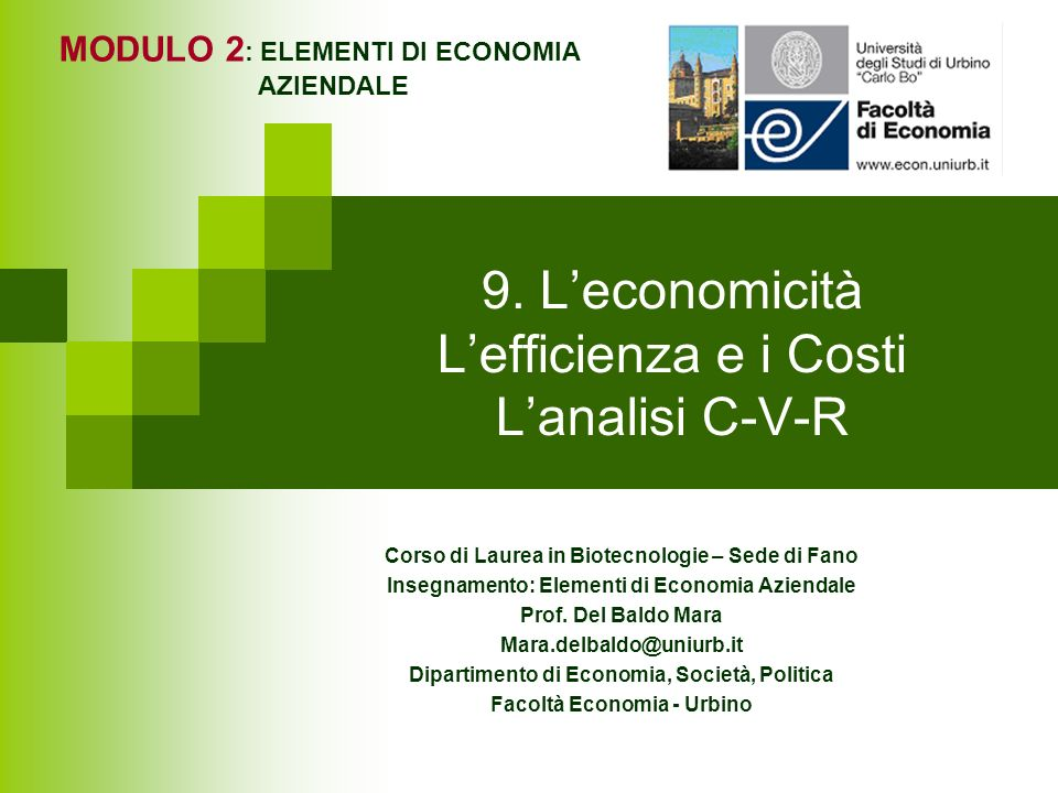 9. L'economicità L'efficienza e i Costi L'analisi C-V-R