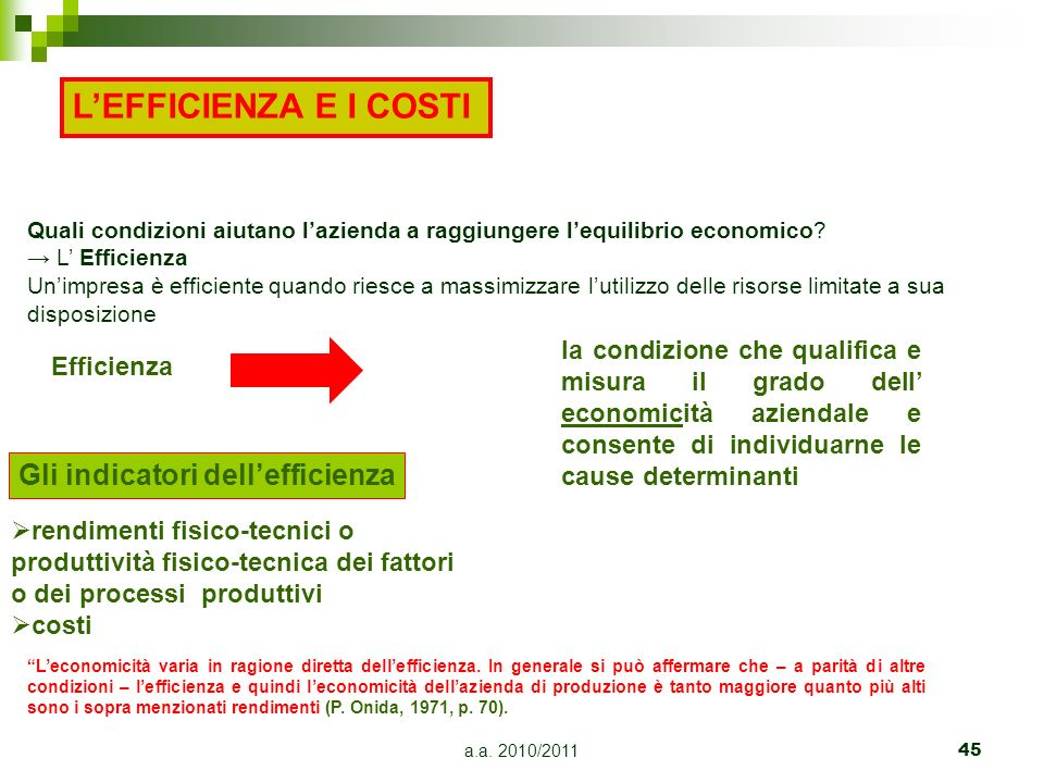L'EFFICIENZA E I COSTI Gli indicatori dell'efficienza