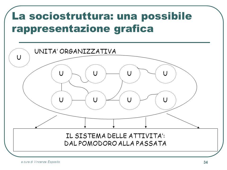 La sociostruttura: una possibile rappresentazione grafica