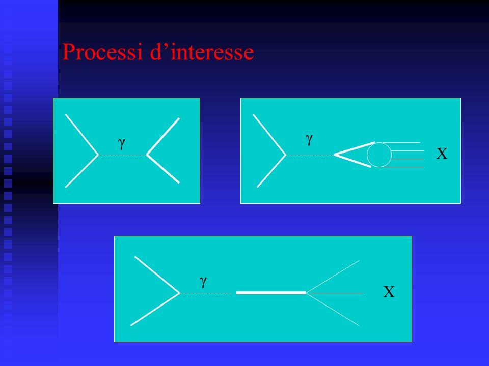 Processi d'interesse γ γ X γ X