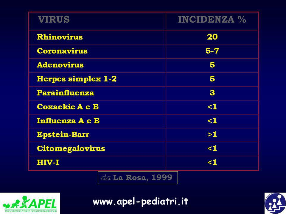 INCIDENZA % VIRUS <1 HIV-I Citomegalovirus >1 Epstein-Barr