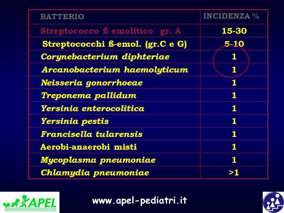 Arcanobacterium haemolyticum Streptococchi ß-emol. (gr.C e G)