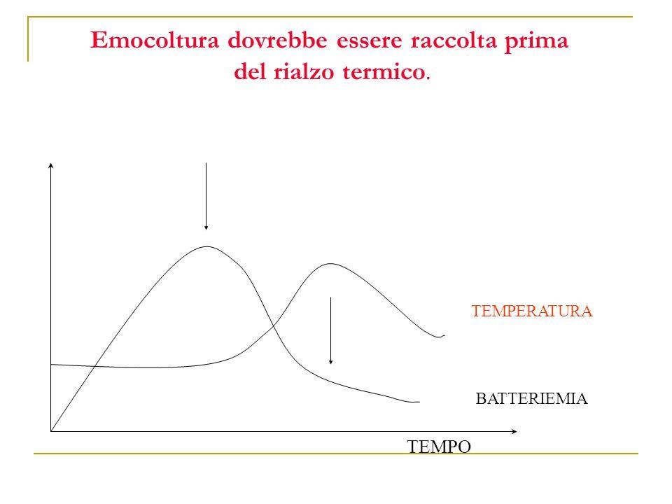 Emocoltura dovrebbe essere raccolta prima del rialzo termico.