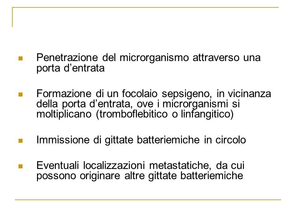 Penetrazione del microrganismo attraverso una porta d'entrata