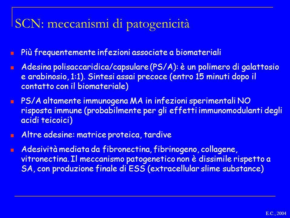 SCN: meccanismi di patogenicità