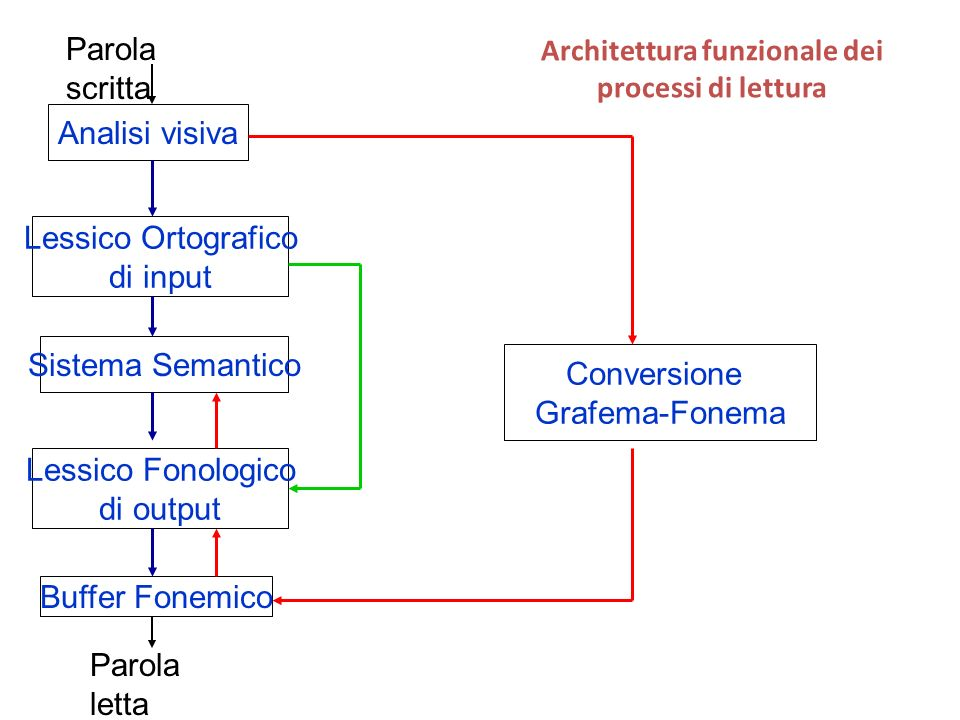 Architettura funzionale dei processi di lettura