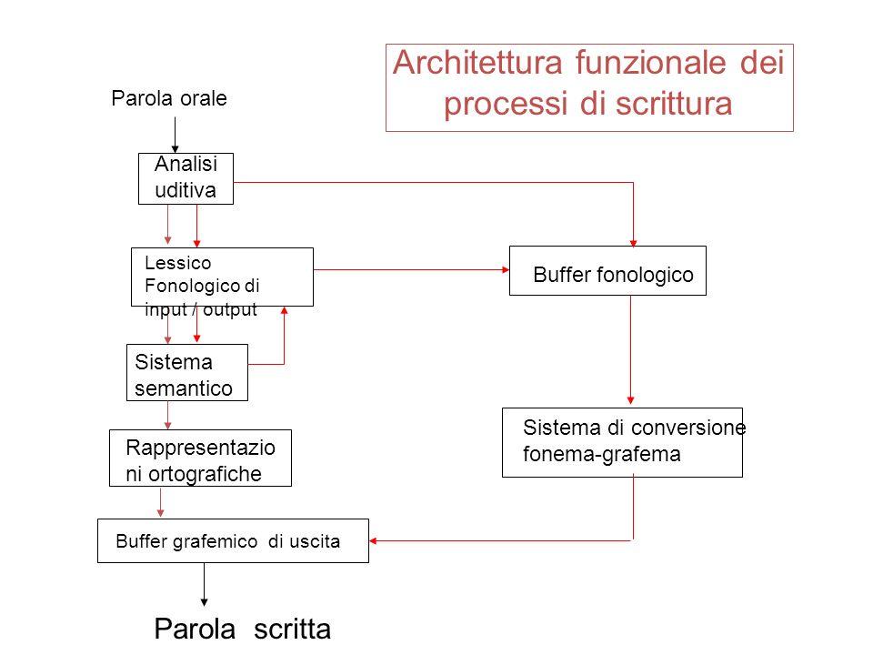 Architettura funzionale dei processi di scrittura