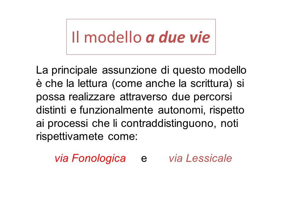 Il modello a due vie La principale assunzione di questo modello
