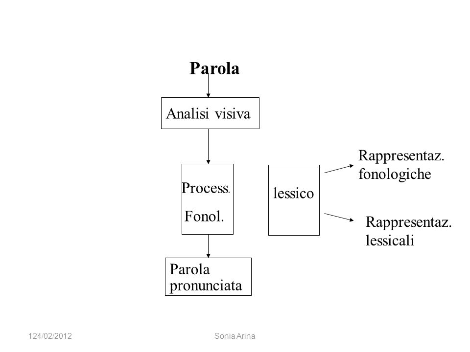 Rappresentaz. fonologiche