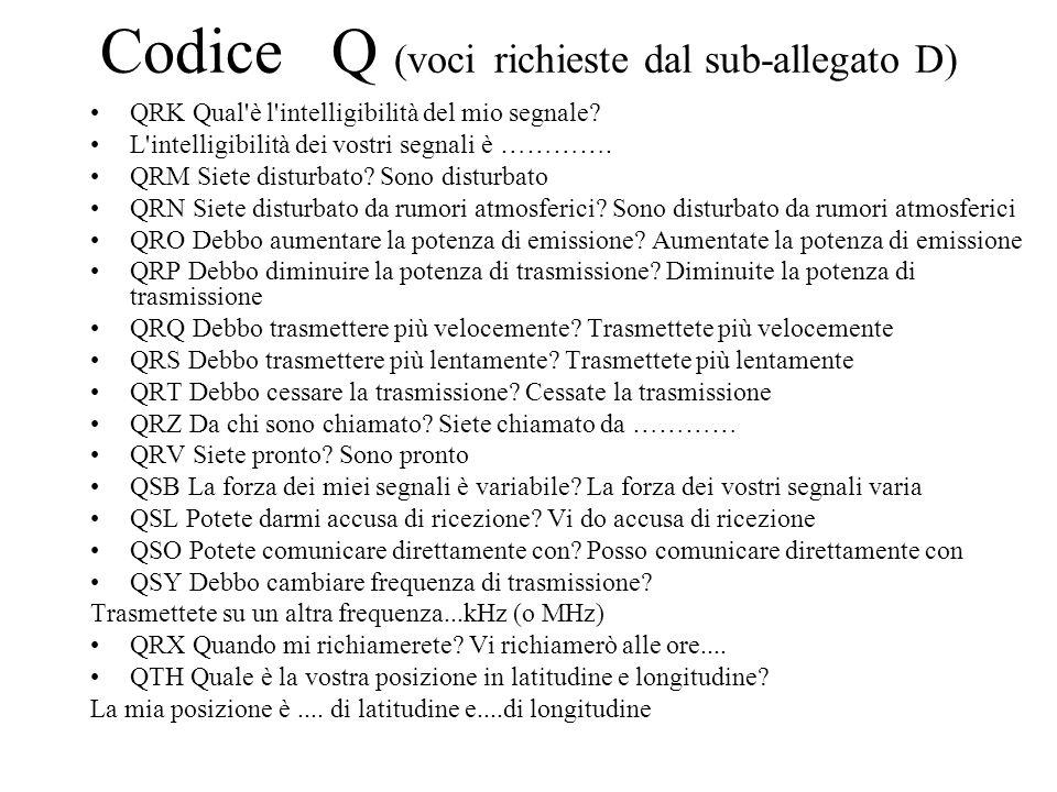 Codice Q (voci richieste dal sub-allegato D)