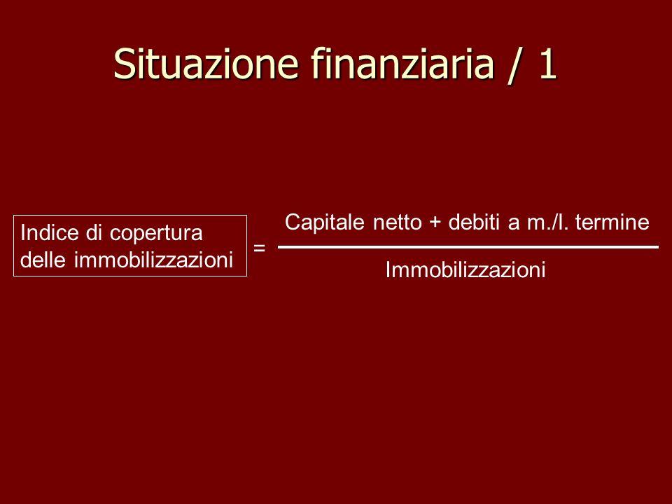 Situazione finanziaria / 1