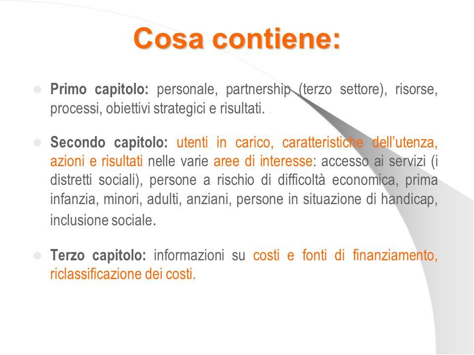 Cosa contiene: Primo capitolo: personale, partnership (terzo settore), risorse, processi, obiettivi strategici e risultati. .