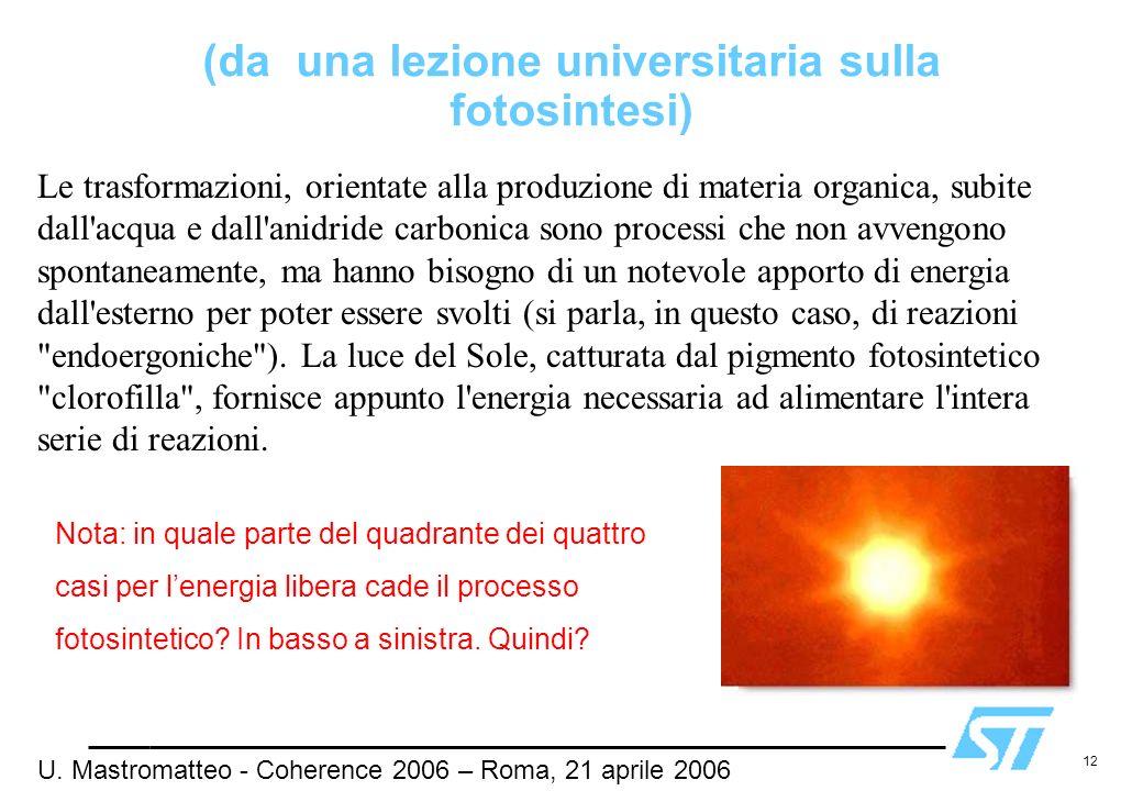 (da una lezione universitaria sulla fotosintesi)