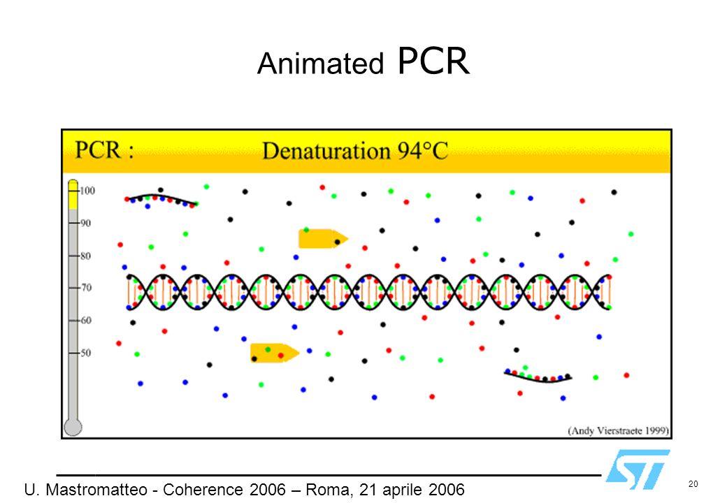 Animated PCR U. Mastromatteo - Coherence 2006 – Roma, 21 aprile 2006