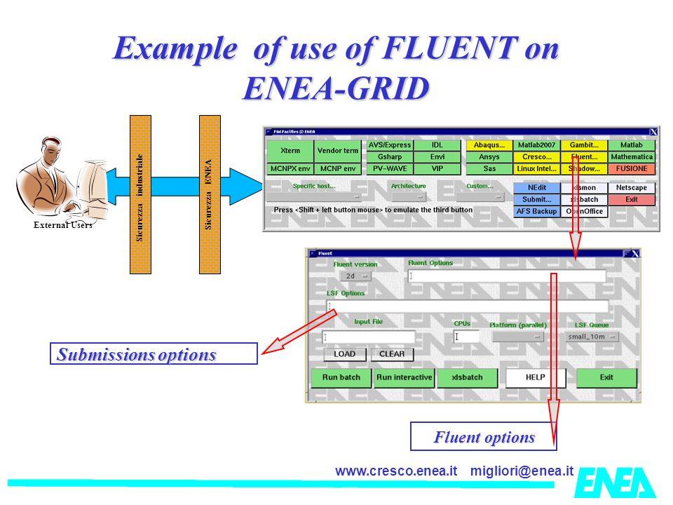 Example of use of FLUENT on ENEA-GRID Sicurezza industriale