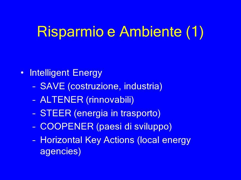 Risparmio e Ambiente (1)