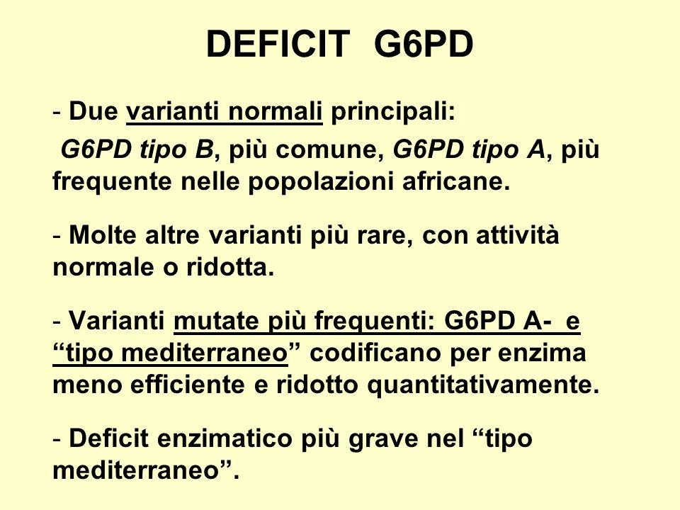 DEFICIT G6PD Due varianti normali principali: