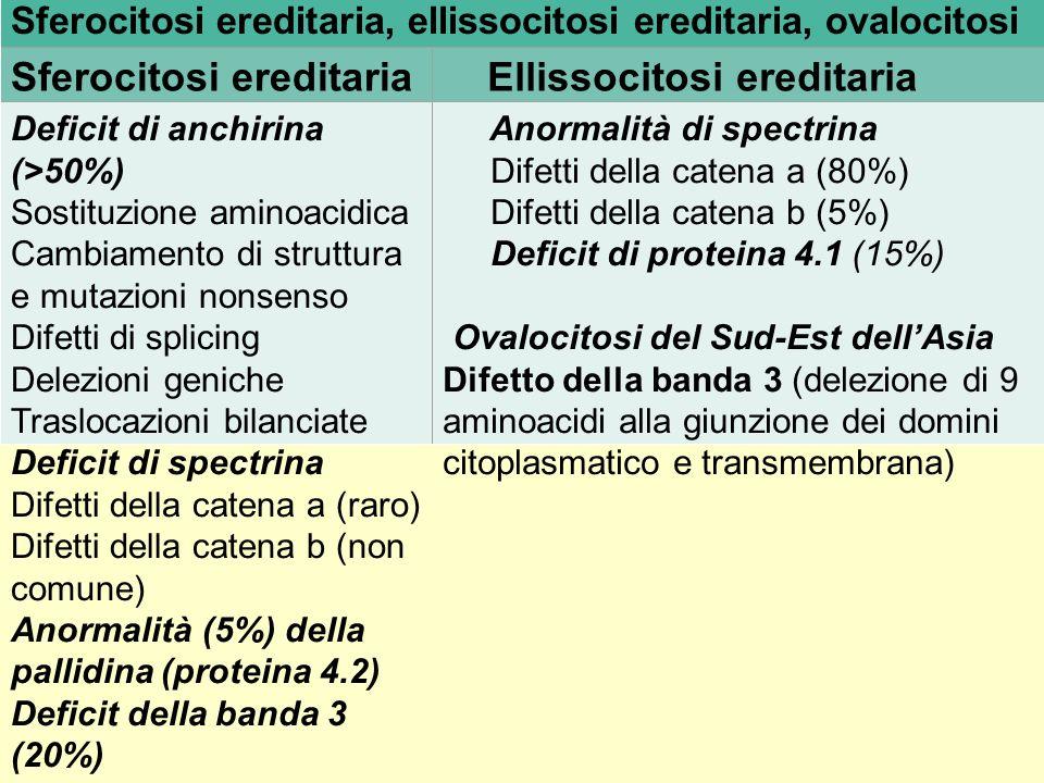 Sferocitosi ereditaria Ellissocitosi ereditaria