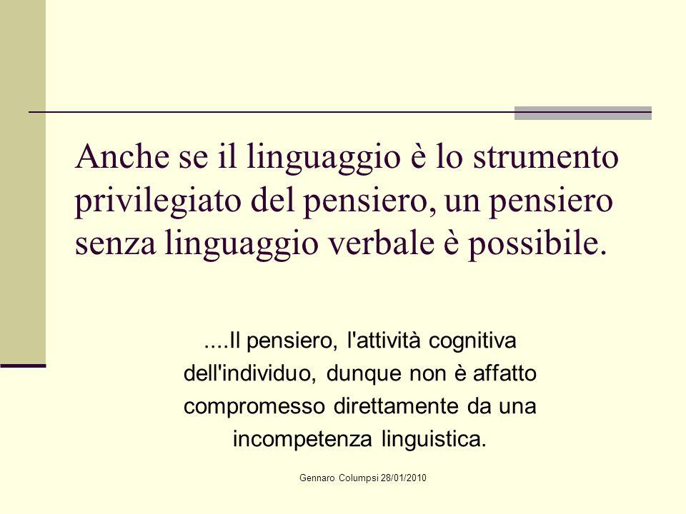 Anche se il linguaggio è lo strumento privilegiato del pensiero, un pensiero senza linguaggio verbale è possibile.