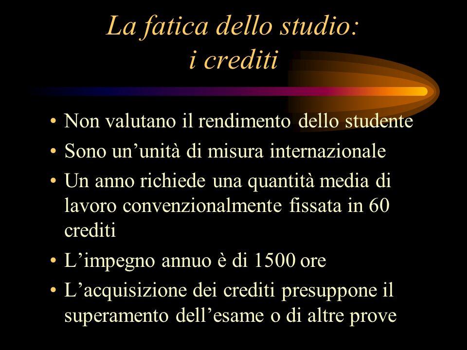 La fatica dello studio: i crediti