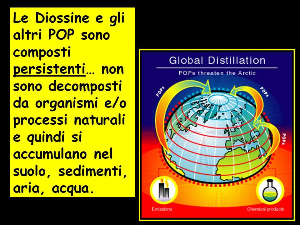 Le Diossine e gli altri POP sono composti persistenti… non sono decomposti da organismi e/o processi naturali e quindi si accumulano nel suolo, sedimenti, aria, acqua.
