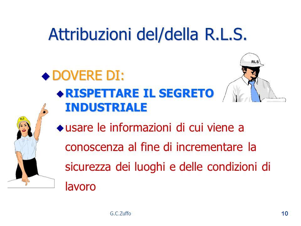 Attribuzioni del/della R.L.S.