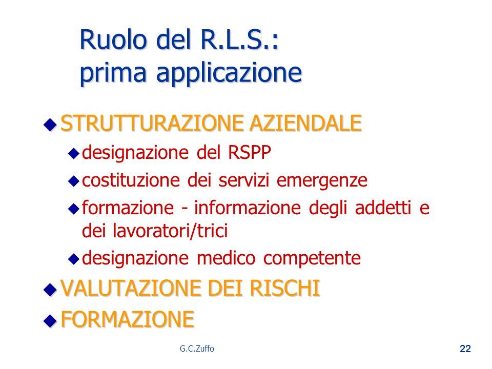 Ruolo del R.L.S.: prima applicazione
