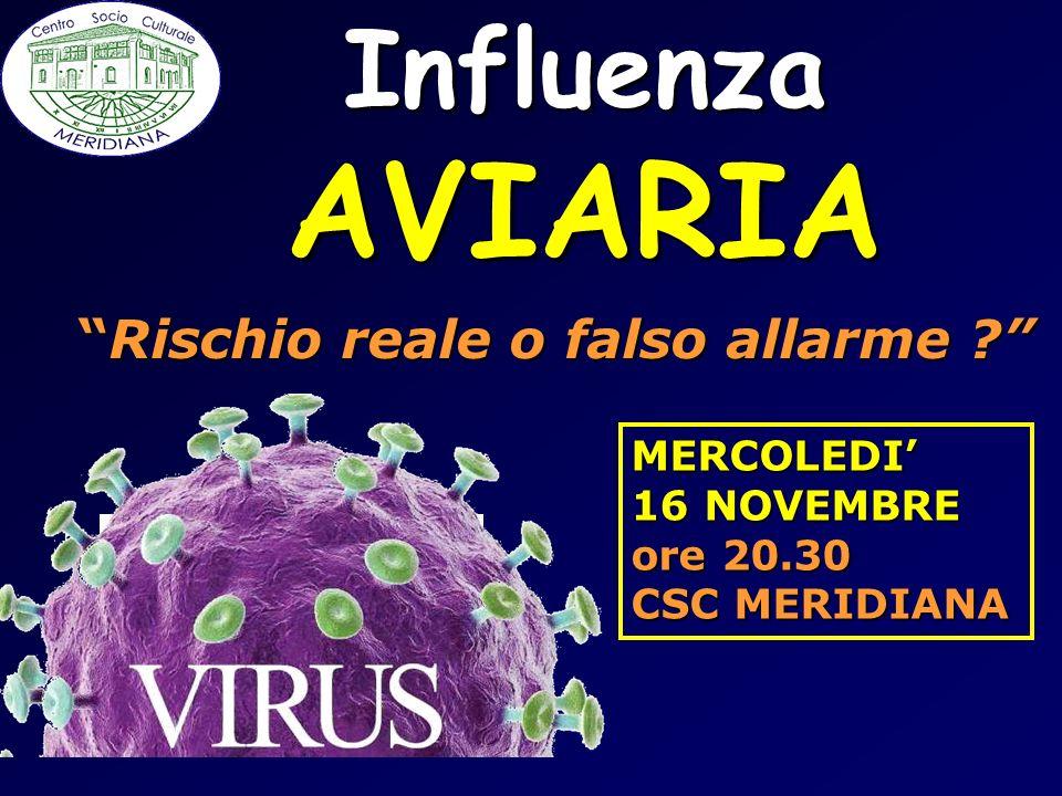 AVIARIA Influenza Rischio reale o falso allarme MERCOLEDI'