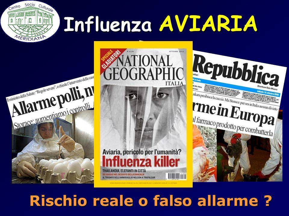Influenza AVIARIA Rischio reale o falso allarme