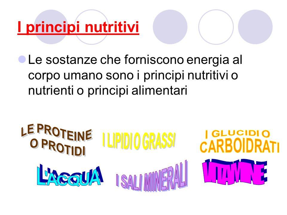 I principi nutritivi VITAMINE