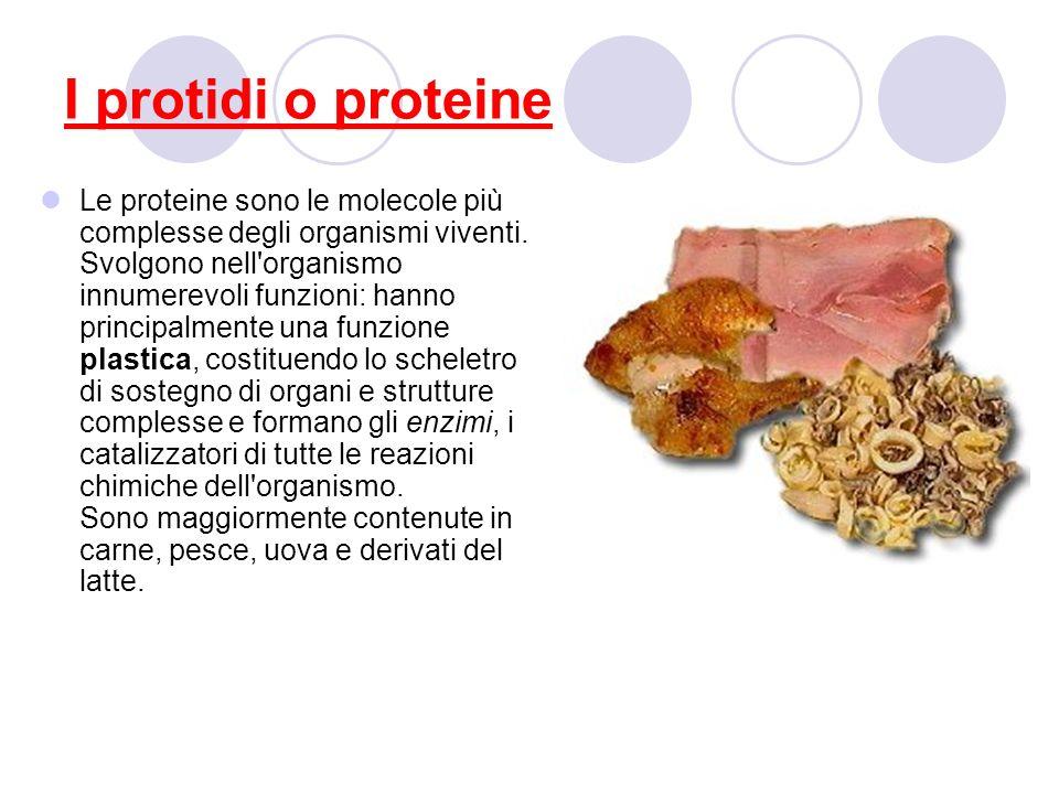 I protidi o proteine