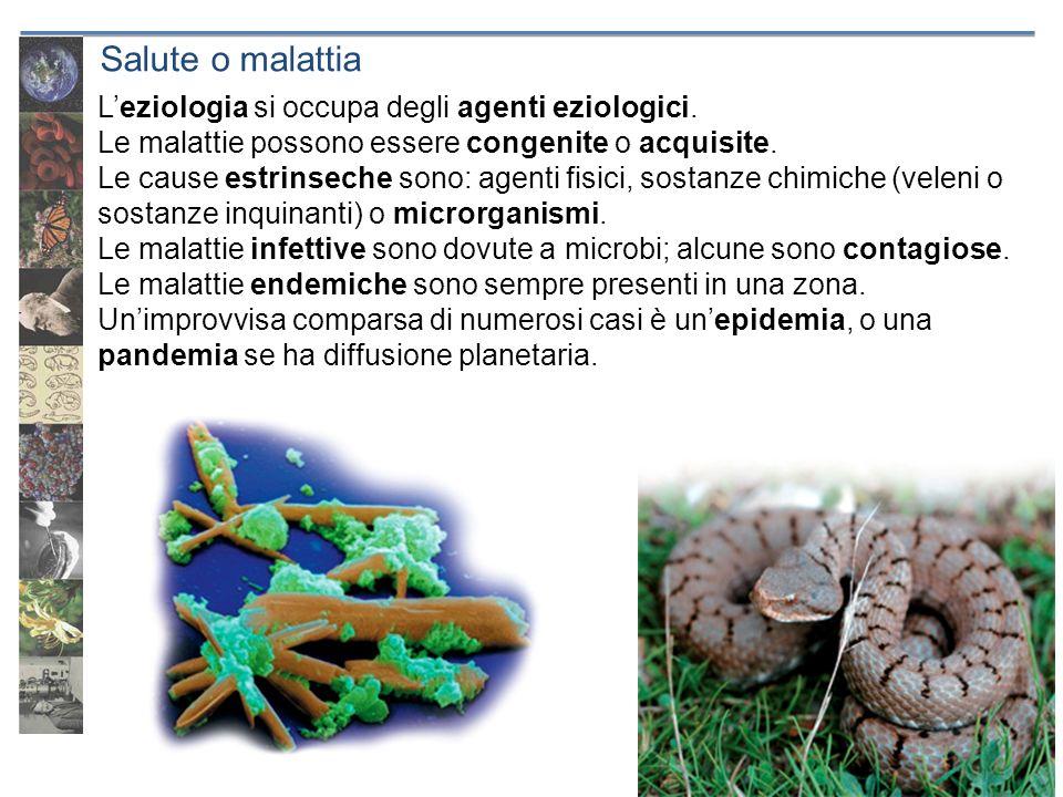 Salute o malattia L'eziologia si occupa degli agenti eziologici.