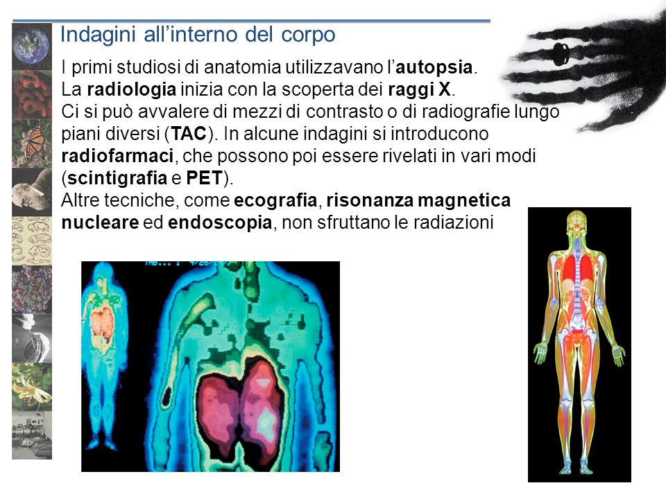 Indagini all'interno del corpo