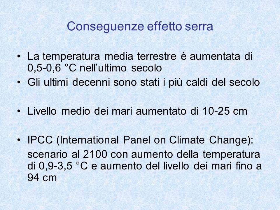 Conseguenze effetto serra