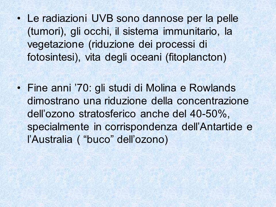 Le radiazioni UVB sono dannose per la pelle (tumori), gli occhi, il sistema immunitario, la vegetazione (riduzione dei processi di fotosintesi), vita degli oceani (fitoplancton)