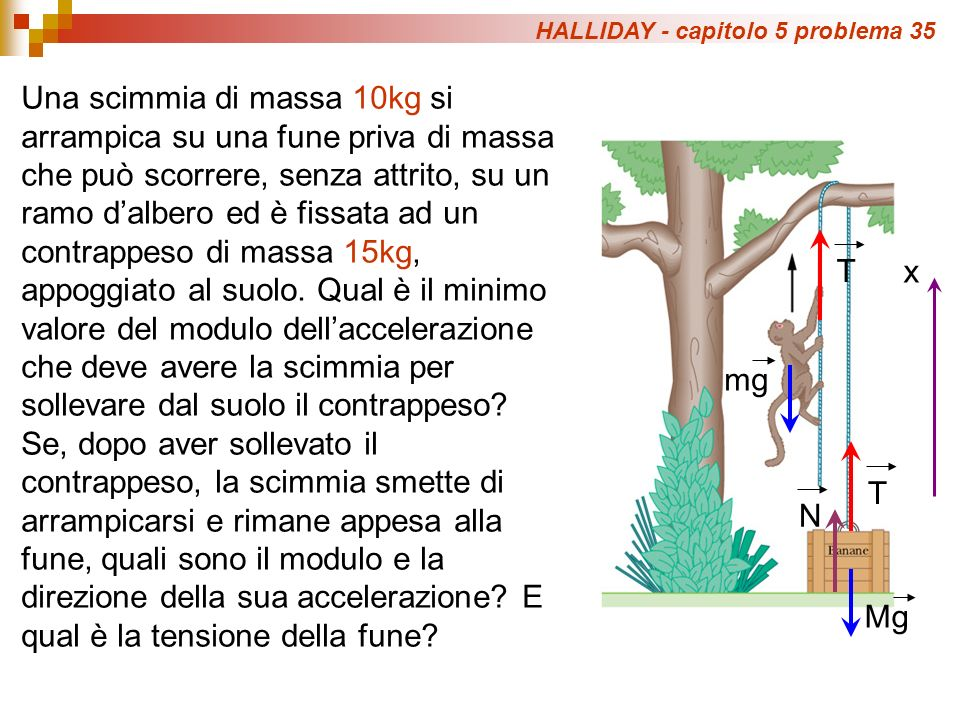 HALLIDAY - capitolo 5 problema 35