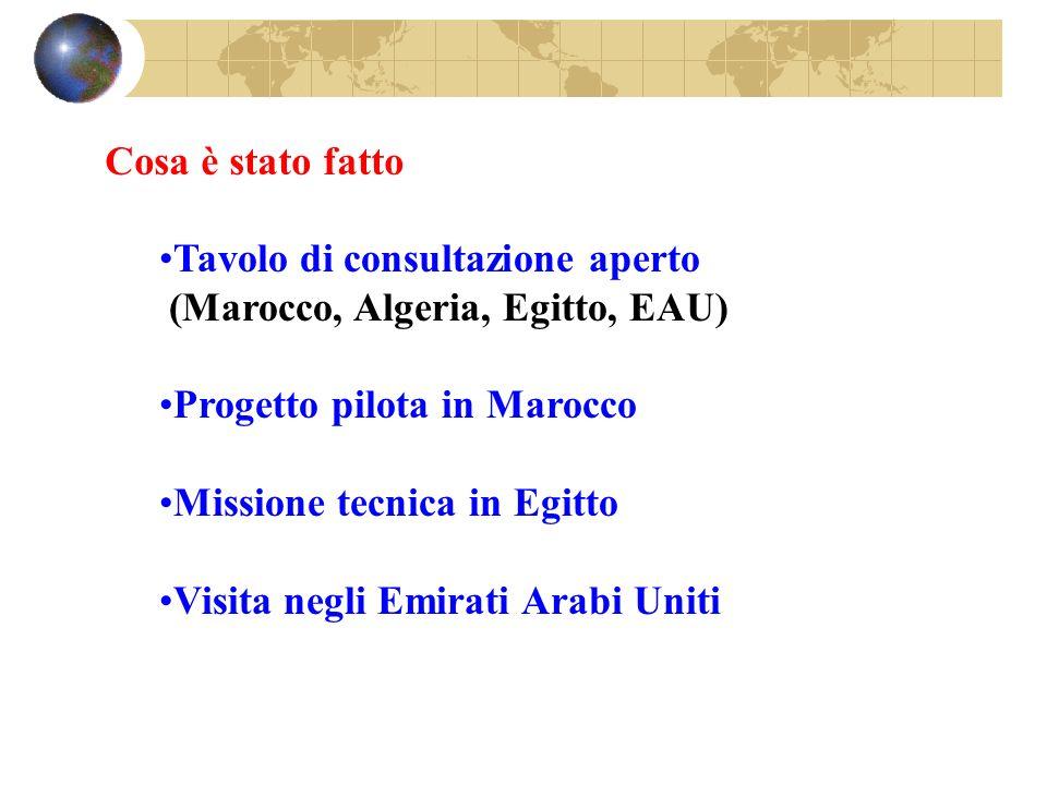 Cosa è stato fatto Tavolo di consultazione aperto. (Marocco, Algeria, Egitto, EAU) Progetto pilota in Marocco.