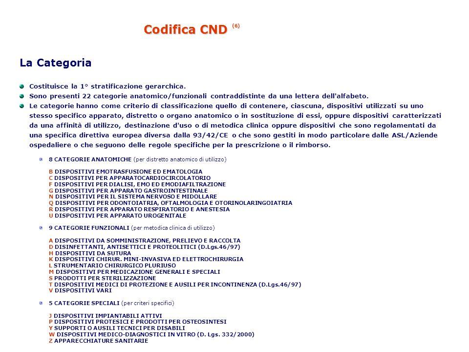Codifica CND (6) La Categoria