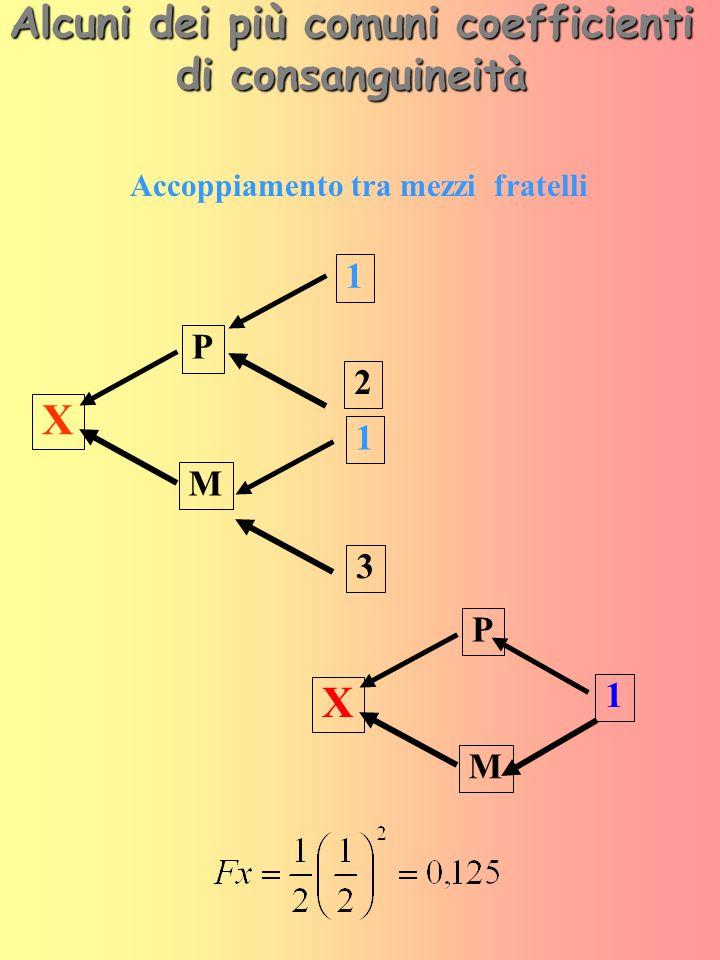 Alcuni dei più comuni coefficienti di consanguineità