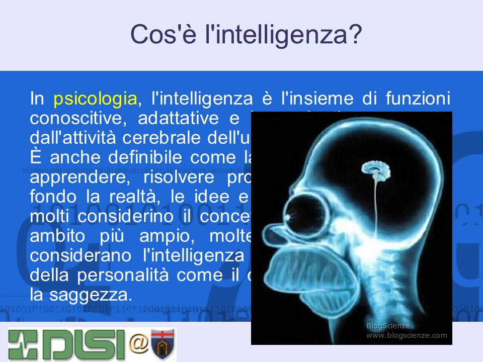 Cos è l intelligenza