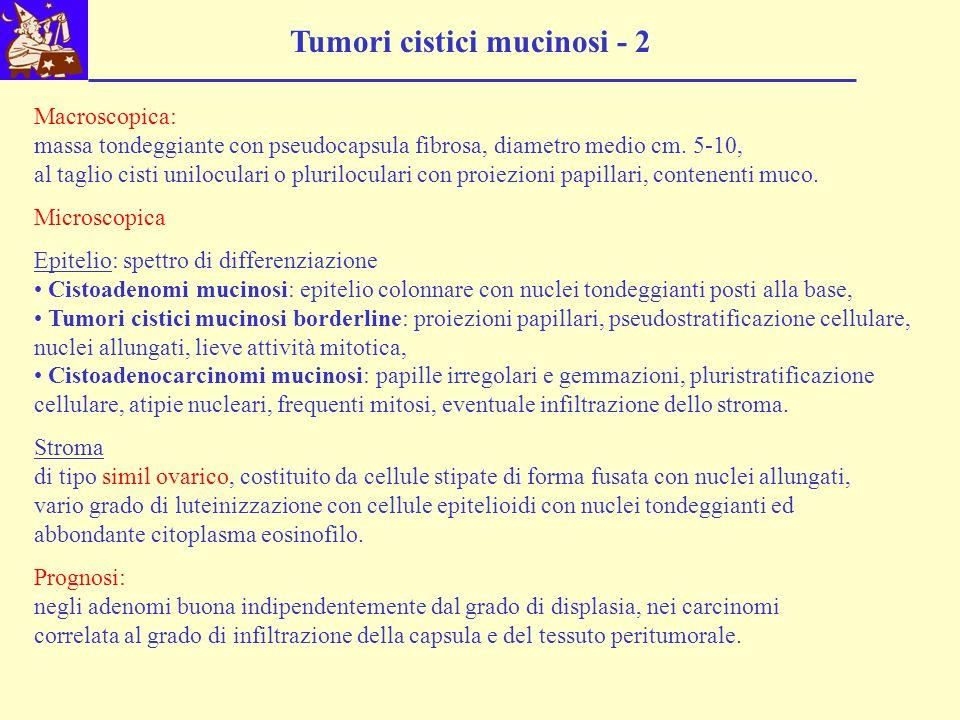 Tumori cistici mucinosi - 2