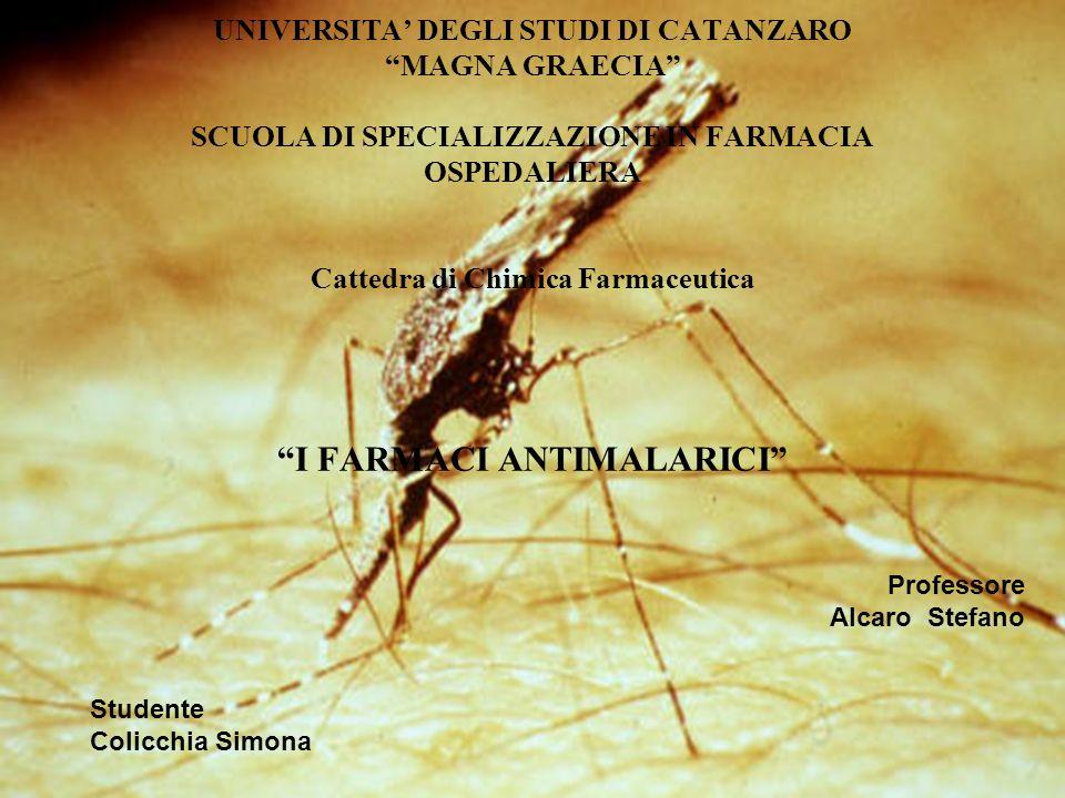 Professore Alcaro Stefano Studente Colicchia Simona