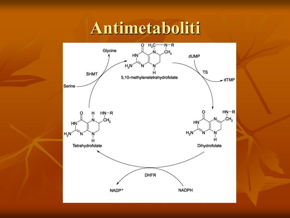 Antimetaboliti