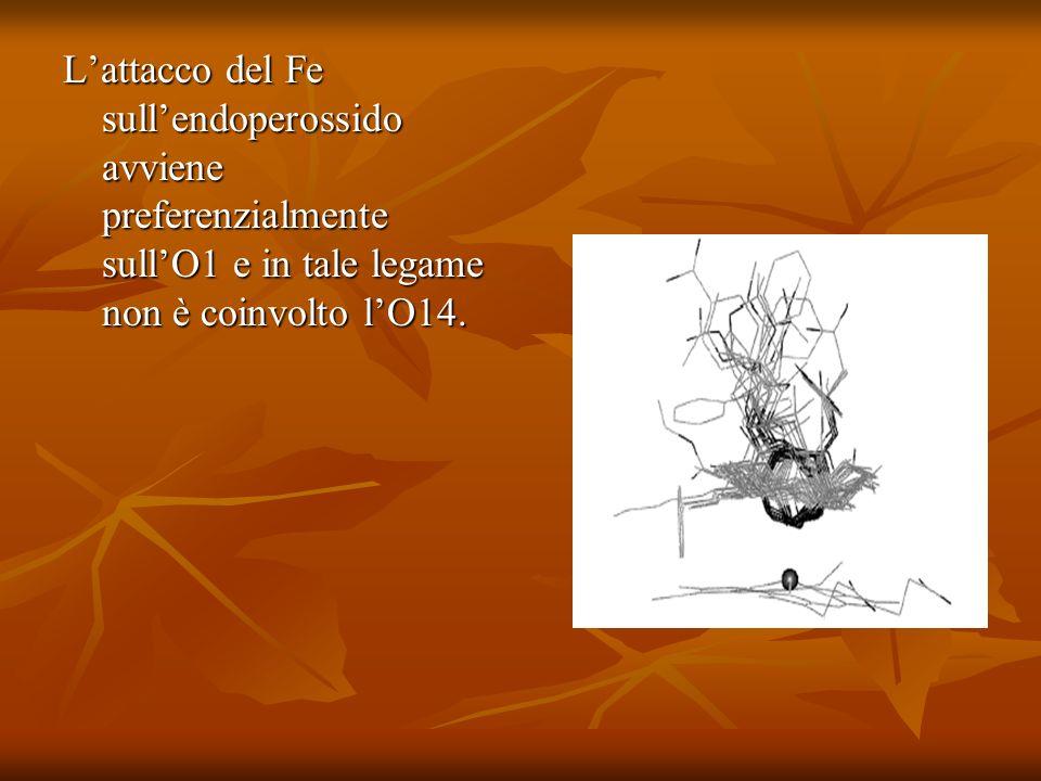 L'attacco del Fe sull'endoperossido avviene preferenzialmente sull'O1 e in tale legame non è coinvolto l'O14.