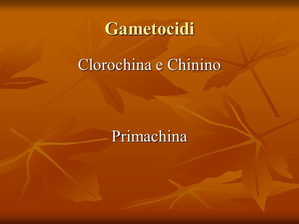 Gametocidi Clorochina e Chinino Primachina