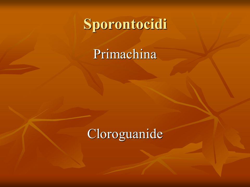 Sporontocidi Primachina Cloroguanide