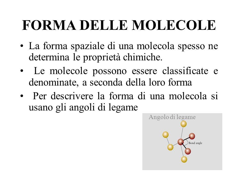 FORMA DELLE MOLECOLE La forma spaziale di una molecola spesso ne determina le proprietà chimiche.
